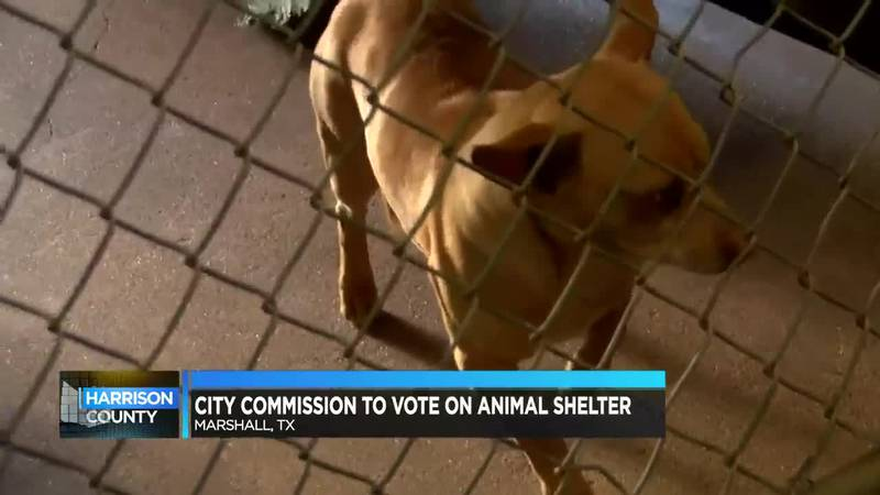 Harrison County: City Commission to vote on animal shelter
