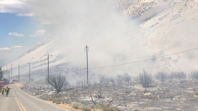 WebXtra: Local Foresters battle California wildfires