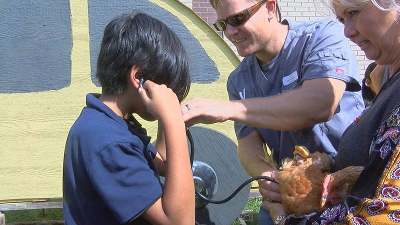 Lufkin elementary uses Education Foundation grant to create outdoor classroom