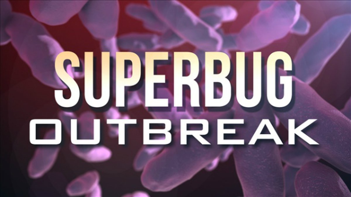 """U.S. health officials say they now have evidence that an untreatable """"superbug"""" fungus has..."""