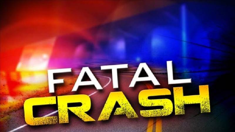 A Tatum man died and two kids were injured Friday afternoon after his front tire blew out and...