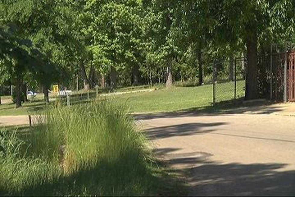 CR 6101 residents claim they've been hearing strange screams at night (Source: KTRE Staff)