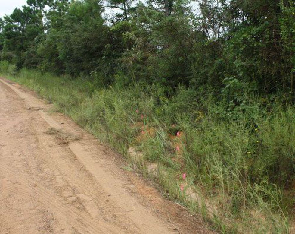 Markers show where the ATV went off the road. (Source: PolkCountyToday.com)