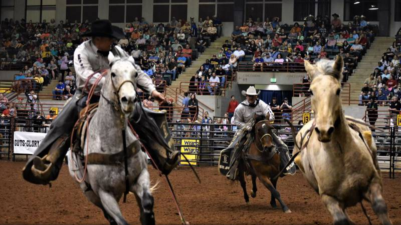 Two winners will win four tickets to the Georgia National Rodeo!
